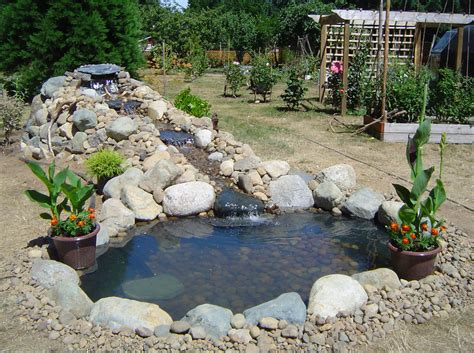 excellent fish pond design ideas for the home owners