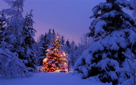 1440x900 christmas wallpaper wallpapers backgrounds cold christmas landscapes winter