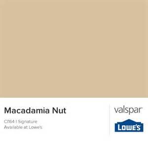 macadamia paint color macadamia nut from valspar paint color ideas