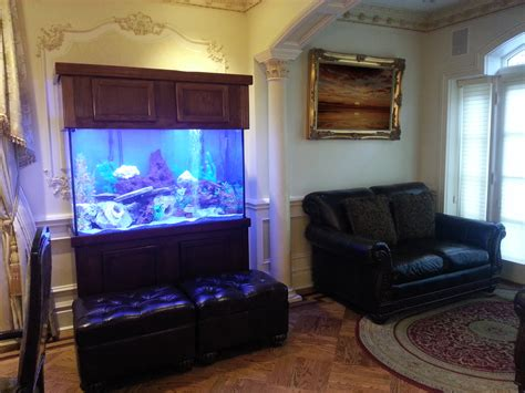 fish tank living room portfolio fish tank