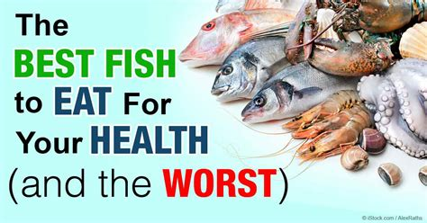finding the best seafood for your health and the earth