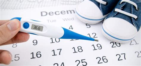 Calendario Ovulacao Calend 225 De Ovula 231 227 O Tudo O Que Precisa De Saber