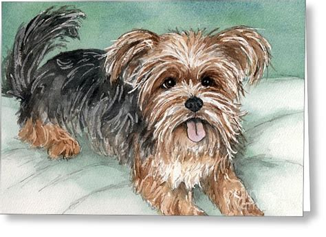 yorkshire beds yorkie watercolor greeting cards for sale