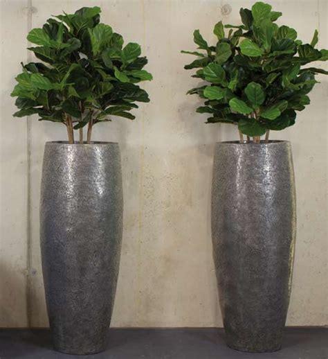 crackle silber fleur ami im greenbop online shop kaufen