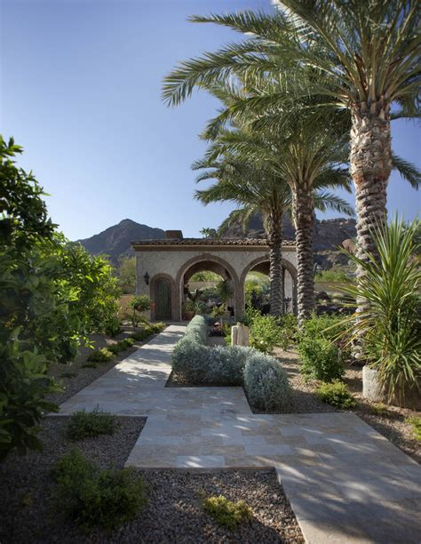 Best Backyard Trees For Privacy Splashy Fake Palm Trees In Home Office Contemporary With