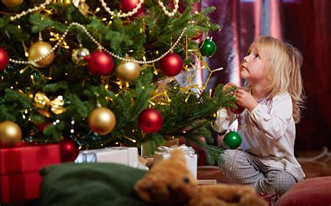 quiz test your christmas tree knowledge