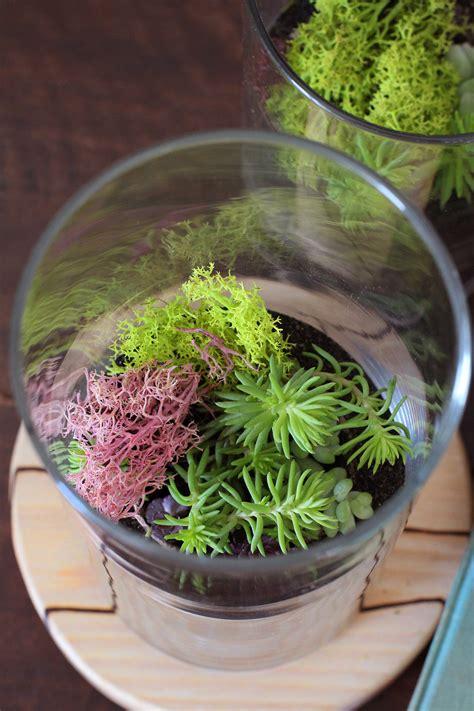 hwtf  makers kit diy sand art terrarium honestly wtf