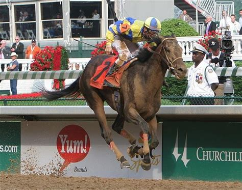 133rd Kentucky Derby by 2007 Sense 133rd Kentucky Derby Winners