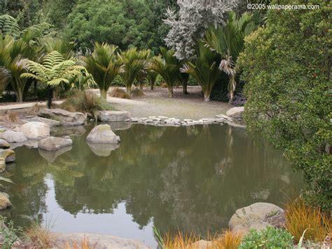 top 28 desert water gardens decorative desert gardens ideas for backyard landscaping pond