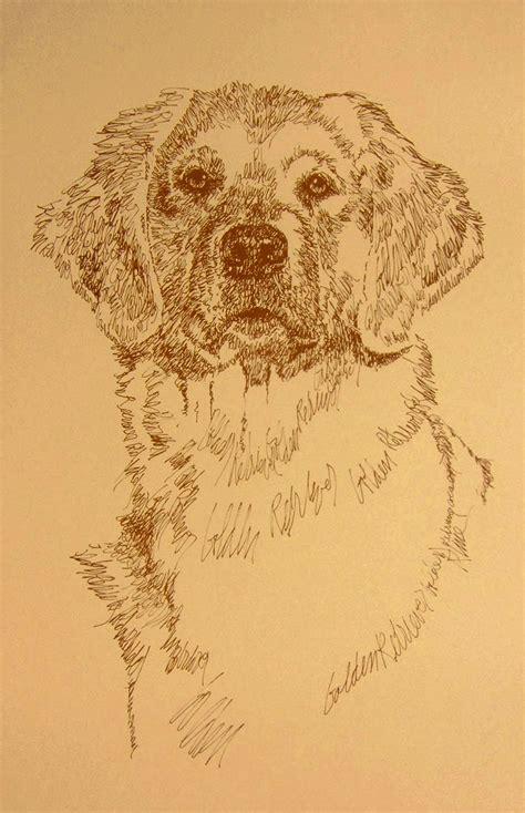 golden retriever puppies 500 dollars golden retriever portrait 237 adds your dogs name free gift ebay
