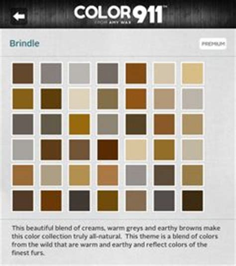 paint colors that go together gray and tan paint colors that go together