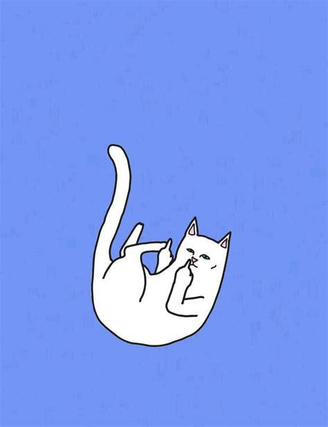 ripndip wallpaper cat pinterest the world s catalog of ideas