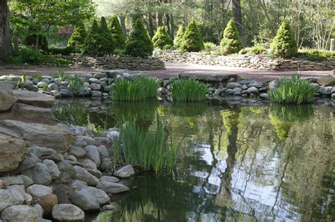 large backyard ponds image gallery large backyard pond designs