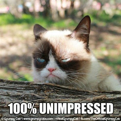 Unimpressed Meme - 25 best ideas about unimpressed meme on pinterest funny