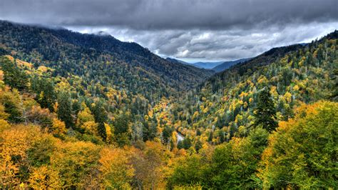 Top 10 Smoky On by 2017 Smoky Mountains Fall Foliage 100 Images When Is