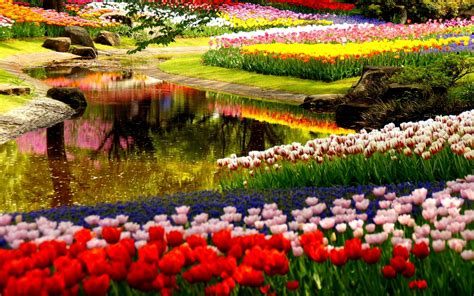 spring gardens spring garden wallpapers wallpaper cave