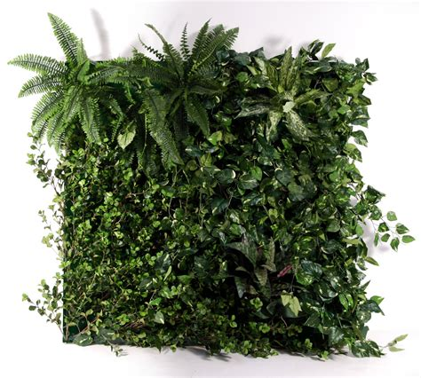 wall plant green wall systems area to mask wall expanses