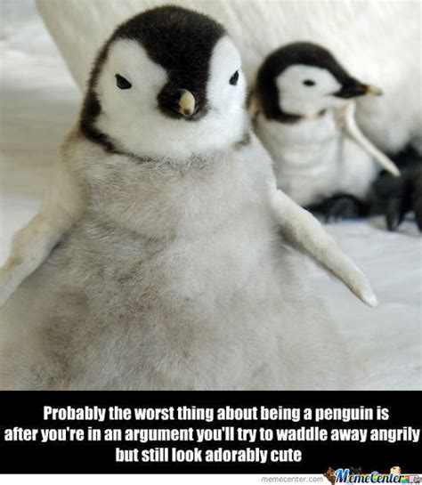 Penguin Birthday Meme - penguin memes best collection of funny penguin pictures