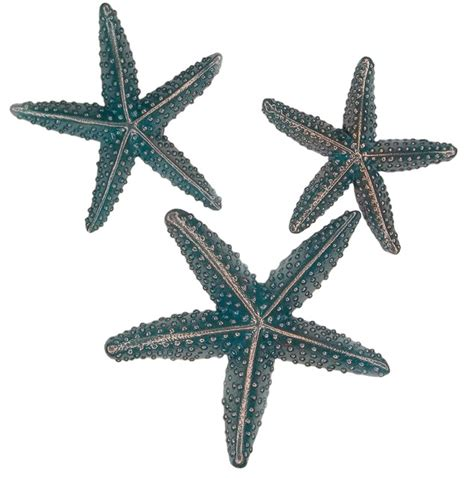 Starfish Cabinet Knobs by Starfish Kitchen Cabinet Knobs Style Orlando