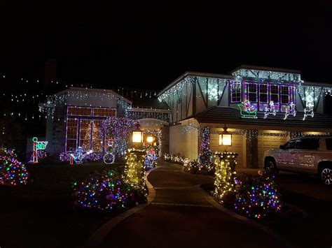 thoroughbred christmas lights 400 photos local flavour