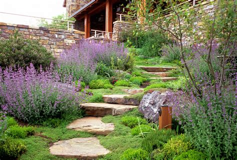 Landscape Hill Contemporary Landscape With House Foundation Landscaping
