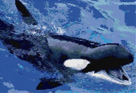 killer whale pattern killer whale s cross stitch patterns