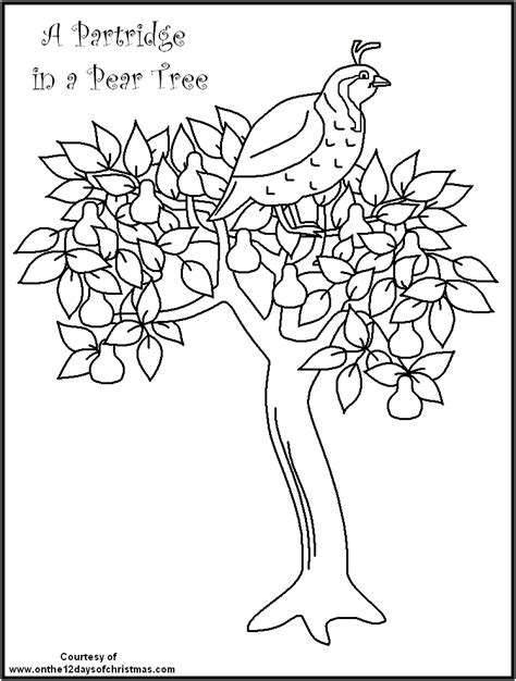12 days of christmas coloring pages coloring home