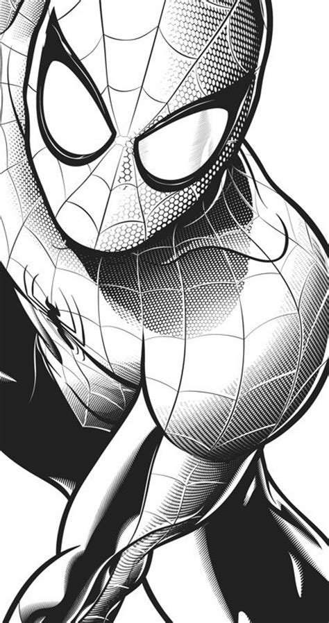 imagenes spiderman negro m 225 s de 25 ideas incre 237 bles sobre spiderman dibujo en