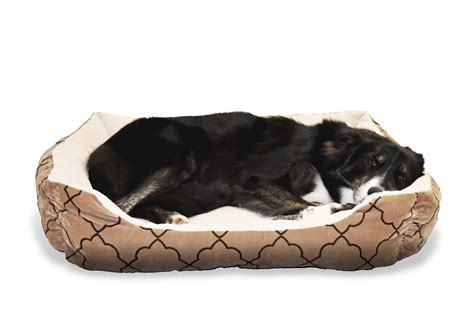 best dog bed for chewers durable dog beds for chewers the best of bed and bath