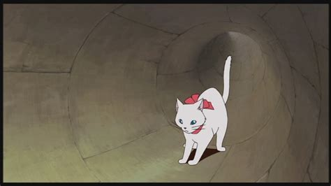 ghibli cat film the cat returns studio ghibli image 25649296 fanpop