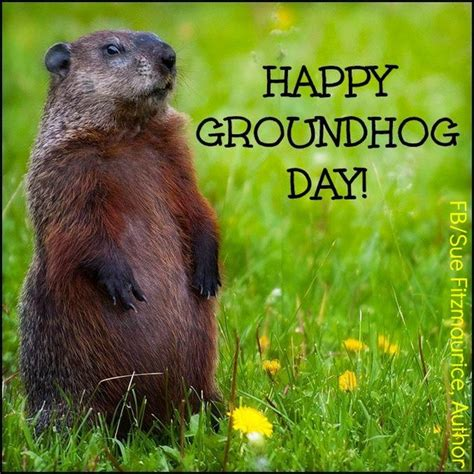 groundhog day and happy day