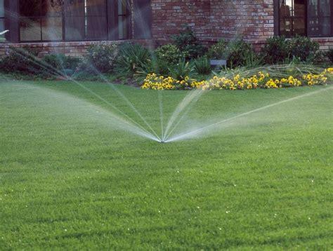 irrigare il giardino irrigare con l acqua di mare giardinaggio usare acqua