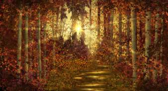 forest trails wall mural amp photo wallpaper photowall wall mural photo wallpaper green forest scene quot autumn