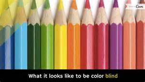 what is it like to be color blind what it looks like to be color blind holy kaw