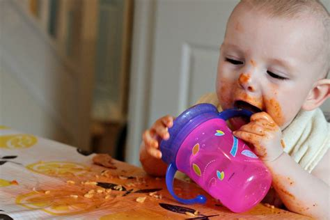 baby led weaning the essential baby led weaning essential products hello deborah