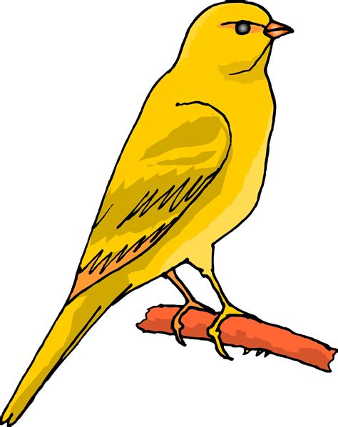 clipart etc canary clip www imgkid the image kid has it