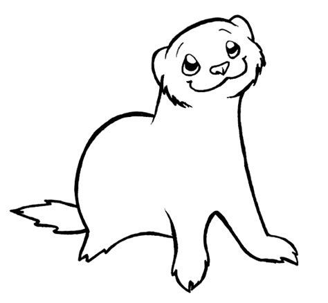 chino ferret lineart by spikysshadow on deviantart
