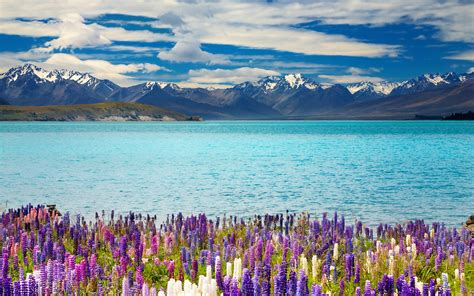 wallpaper 4k new new zealand lake tekapo 4k ultra hd wallpaper 4k