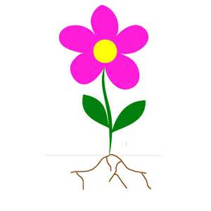 flower with stem template clipart best