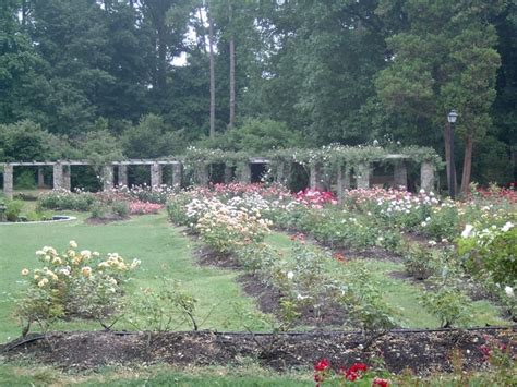 Garden Raleigh by Raleigh Municipal Garden Wedding Venues Vendors