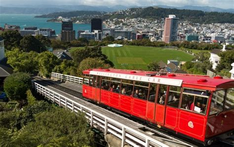 free trip to new zealand keen for a free trip to new zealand you ve just got to