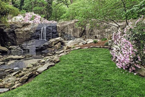 Landscape Rock Greenville Sc Pink And Green Rock Quarry Garden In Cleveland Park