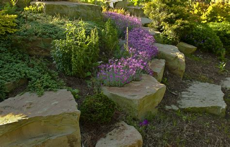 rock features in gardens kentucky plant and wildlife rock gardens a great