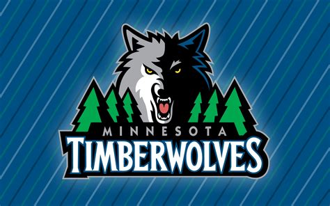 minnesota timberwolves 02 punch sports the minnesota timberwolves are the