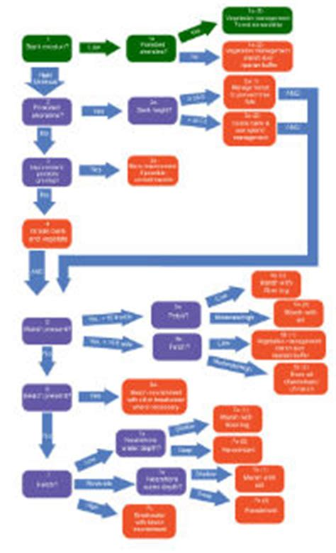 weight management forest decision tree tool