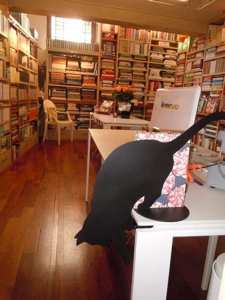 libreria cittadella libreria altrevoci libreria