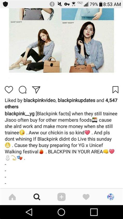 blackpink facts new fact about blackpink jisoo blink 블링크 amino
