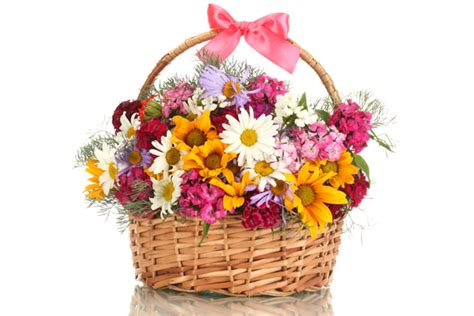 new year flower basket best new year gift ideas dgreetings