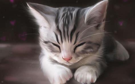 wallpaper cat drawn 猫星人睡觉图片 猫 睡觉 猫咪 动物 图片大全 壁纸族