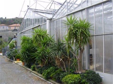 il giardino dei giorgi lavagna piante fiori